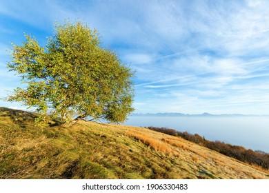 Mountain landscape On Mottarone Mount, Italy.