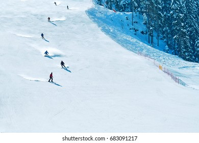Mountain landscape. Skiers climbing on the piste. Ski resort, Bansko, Bulgaria. Ski track. People ski on snow in the winter. Pine forest