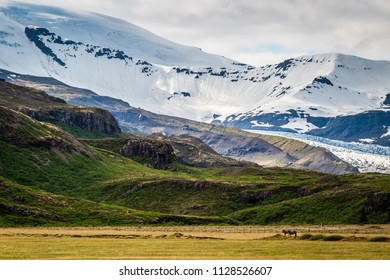 Mountain Landscape with Snow - Iceland