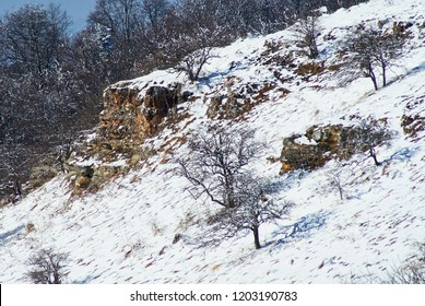 Mountain landscape. Snow-covered rocks on the middle plan, on the front glade, on the back winter forest. Lago-Naki, The Main Caucasian Ridge, Russia