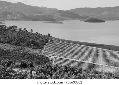 Mountain landscape in south Croatia, on the border to Bosnia. View of deransko lake and Netreva delta, with vineyards on the hills. Southeast Europe.