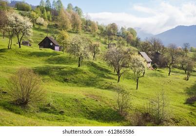 Mountain landscape in spring, Carpathians