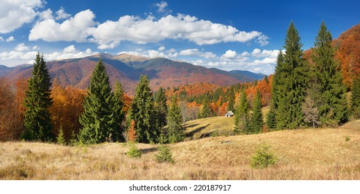 Mountain landscape. Stormy sky and rain. Spruce forest on the slopes of the mountains. Carpathian, Ukraine, Europe