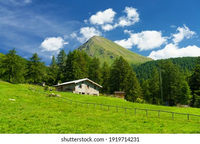 Mountain landscape at summer along the road to Mortirolo pass, in Brescia province, Lombardy, Italy