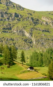 mountain landscape with traditional Walser house on green mountain slope, shot on a bright summer cloudy day near Staffal,  Lys valley, Aosta, Italy
