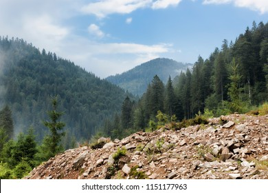 Mountain landscape, vegetation, mountains, dramatic sky