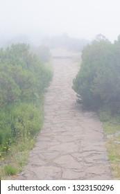 Mountain landscape. View of mountain road in fog on the route Pico Areeiro - Pico Ruivo, Madeira island, Portugal, Europe.