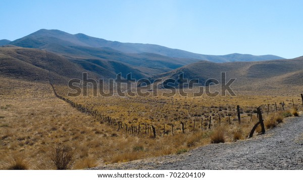 "Mountain landscape with yellow vegetation in a semi-desertic region and blue sky and the background in the National park of ""Los Cardones"" near Salta (Argentina)"