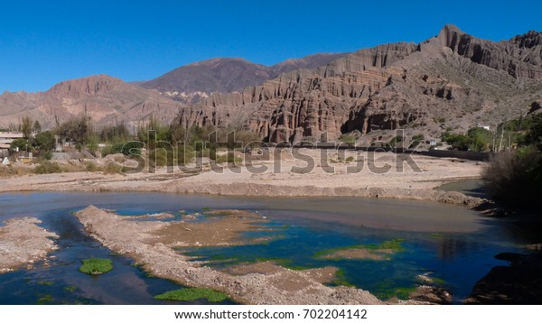 """Mountain landscape with yellow vegetation in a semi-desertic region and blue sky and the background in the National park of """"Los Cardones"""" near Salta (Argentina)"""