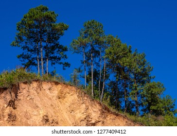 Mountain landslide in an environmentally hazardous area. Large cracks in earth, Descent of large layers of earth blocking road. Soil under condition of the erosion as the cliff by human.