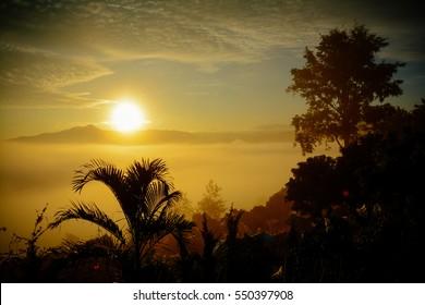Mountain layer in morning sun ray and winter fog.Phu Lanka mountain hills north Thailand.