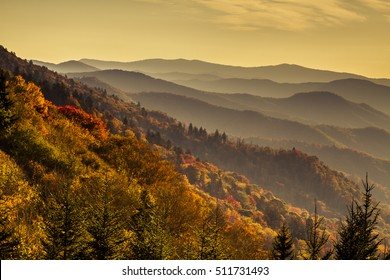 Mountain layers filled with colorful fall foliage just after sunrise in Great Smoky Mountains National Park