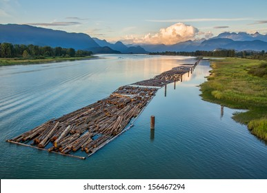 Mountain and logs floating on river