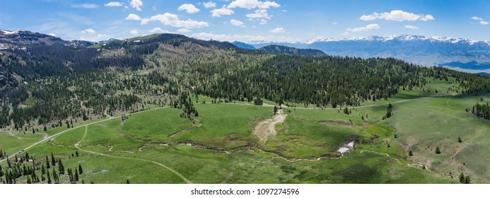 Mountain meadow and access road in the Rocky Mountains of western Wyoming.