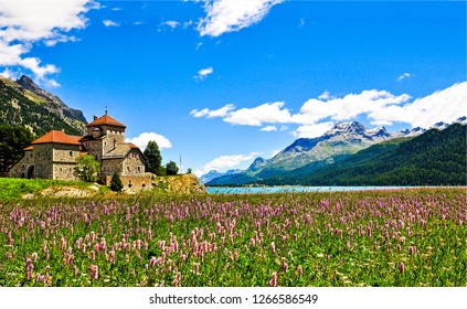 Mountain meadow flowers castle landscape. Mountain castle flowers. Mountain meadow flowers. Mountain meadow flowers house view