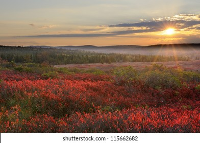 Mountain Meadow Sunset