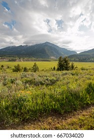 Mountain Meadows in the early morning under cumulus clouds in Alpine Wyoming USA