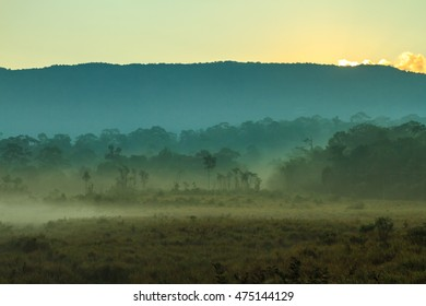 Mountain and mist in the morning at Khao Yai national park (a unesco world heritage site), Thailand.