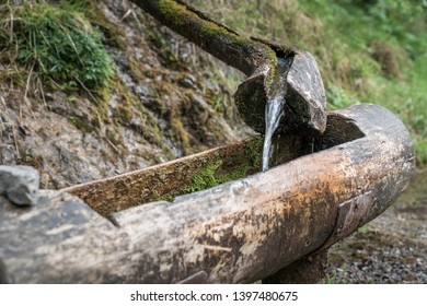 Mountain natural water spring out of wooden gutter from rocky creek at the Vertova torrent near Bergamo.