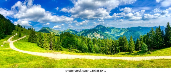 Mountain path adventure. Summer green nature trail panoramic landscape