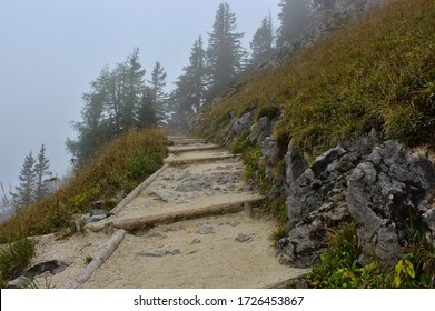 A mountain path between dried up meadows and rocks leading up to a stand of pine trees in the clouds on the Jenner mountain, near the Konigsee in Bavaria, Germany