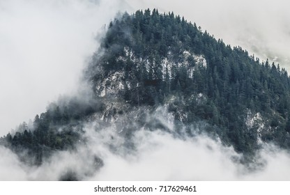 Mountain peak with dense forest covered in morning mist.