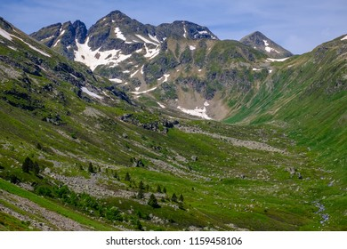 Mountain peak and high mountain pasture in the french Pyrenees in summer, near Aston in Ariege