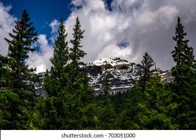 Mountain Peak through the Trees