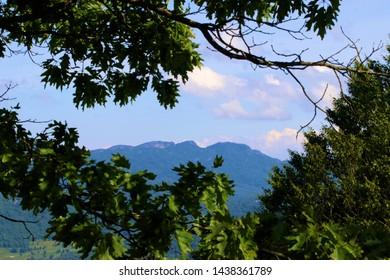 Mountain peaking through the trees