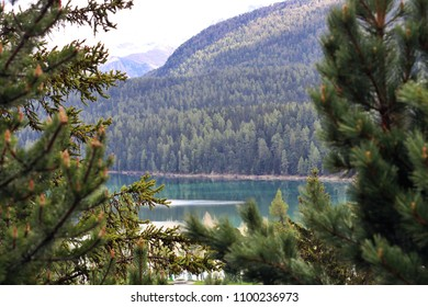 Mountain Peaks, Green Forest and Lake