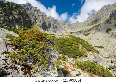 Mountain Peaks in the High Tatra, Orla Perc,