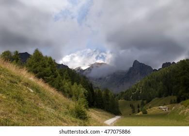 mountain of Pejo - Trentino