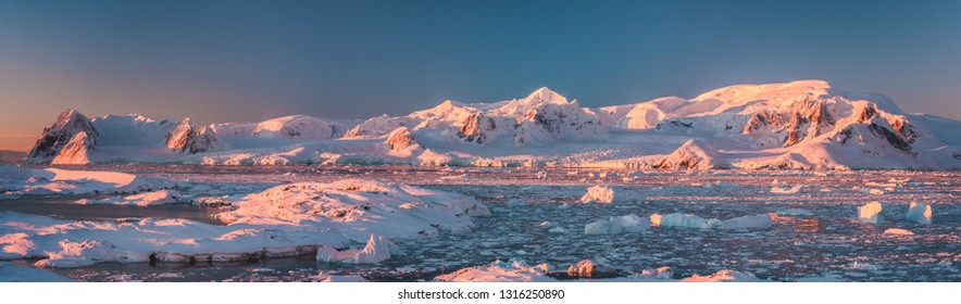 Mountain pink panorama of Antarctica shoreline. Amazing panoramic view. The pieces of the ice floating in the frozen ocean. Breathtaking winter landscape in the cold tints. Travel, nature, destination