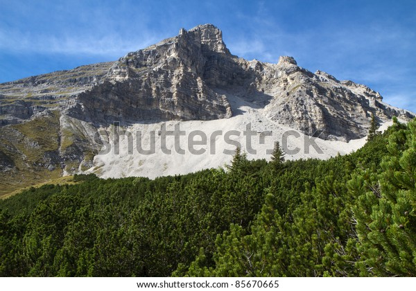 Mountain with  Pinus mugo branches in the foreground, Bavaria, Germany