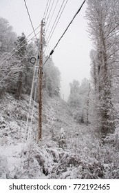 mountain power lines in snow