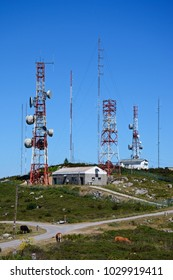 Mountain radar station with cattle grazing in the foreground in the Monchique mountains, Foia, Algarve, Portugal, Europe.