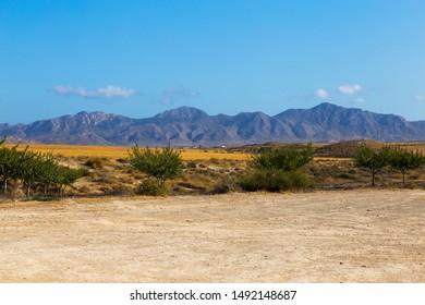 mountain range along the horizon
