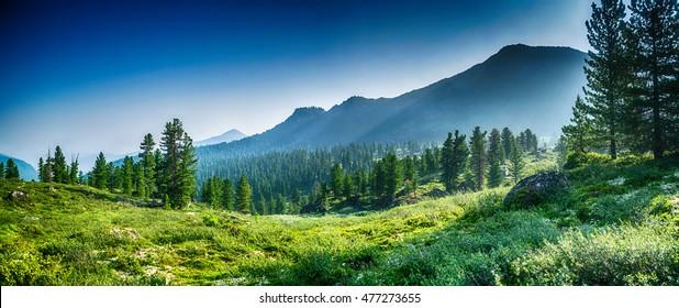 mountain range and evergreen trees, Chamar-Daban, Siberia, Russia, national park
