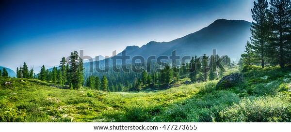 mountain-range-evergreen-trees-khamardab