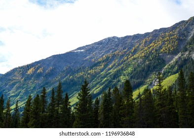 Mountain range of Kootenay National Park with yellow leaves  in Autumn, Canadian Rockies, British Columbia, Canada