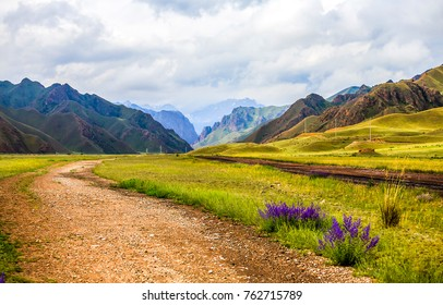 Mountain range road summer landscape