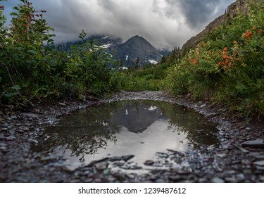Mountain Reflects In Trail Puddle in Many Glacier