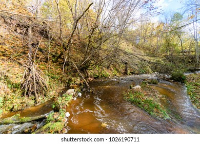 mountain river in autumn with stream and high water in forest