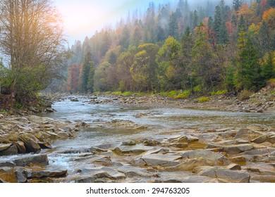 mountain river in autumn at sunrise. Rocky shore. Multi-colour wood