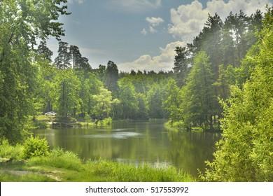 mountain river in the Carpathian Mountains in Ukraine