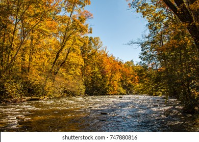 Mountain river with fall colors in Great Smoky Mountains National Park
