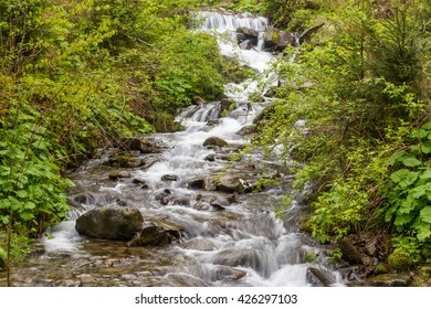 Mountain river flow at spring.