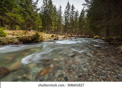 Mountain river flowing through the green forest