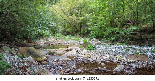 Mountain river in the forest. Stone blockages on the mountain river flowing through the forest