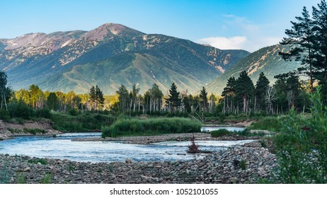 Mountain river and forest trees on the sunset, Altai Mountains, Kazakhstan